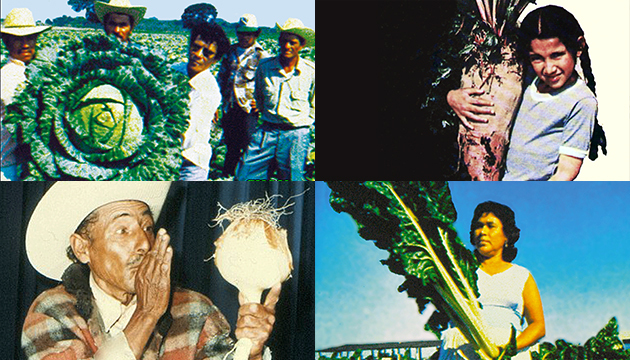 """Vendredi 13 décembre - Yvo Pérez Barreto : """"L'Homme Qui Parle Avec Les Plantes"""", ou le miracle de la communion de l'homme avec la nature."""