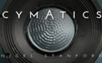 Cymatics : Science Vs. Music from Nigel Stanford
