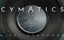 Cymatics : Science Vs. Music from Nigel Stanford
